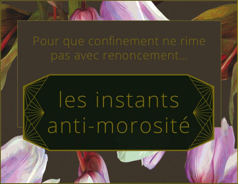instants-anti-morosite